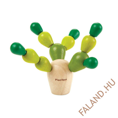 planmini_egyensulyozo_kaktusz